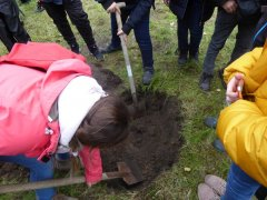 Baumpflanzung18.jpg