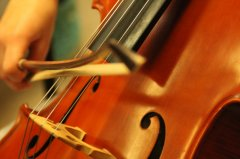 Orchestermusik_am_SteinNo020.jpg